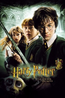 Harry Potter and the Chamber of Secrets - Movie Poster
