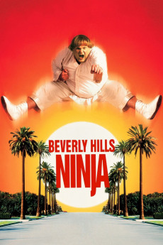 Beverly Hills Ninja - Movie Poster
