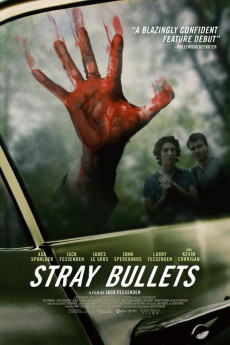 Stray Bullets - Movie Poster