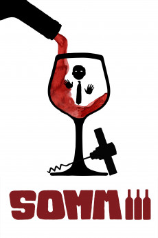 SOMM 3 - Read More