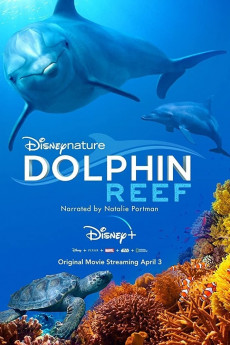 Dolphin Reef - Movie Poster