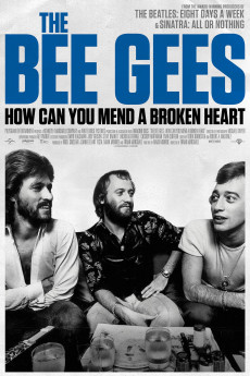 The Bee Gees: How Can You Mend a Broken Heart - Movie Poster